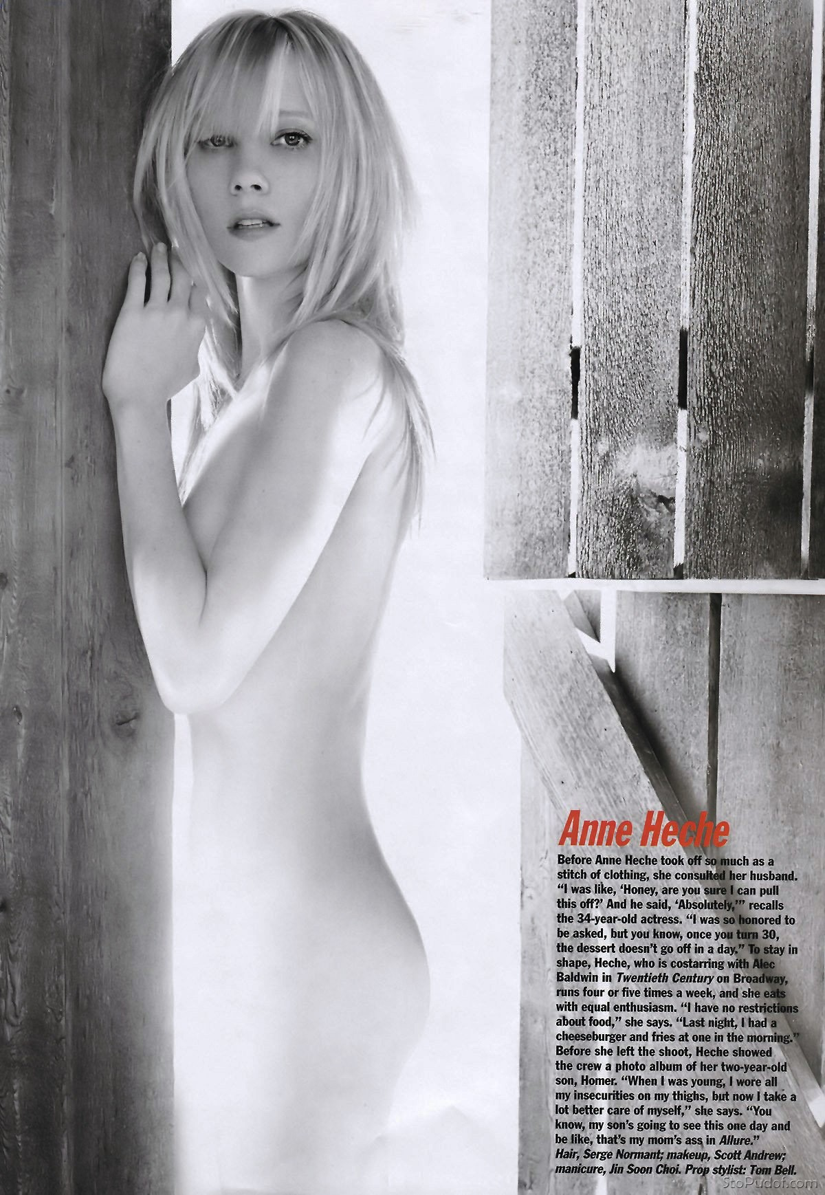 anne heche nude fake