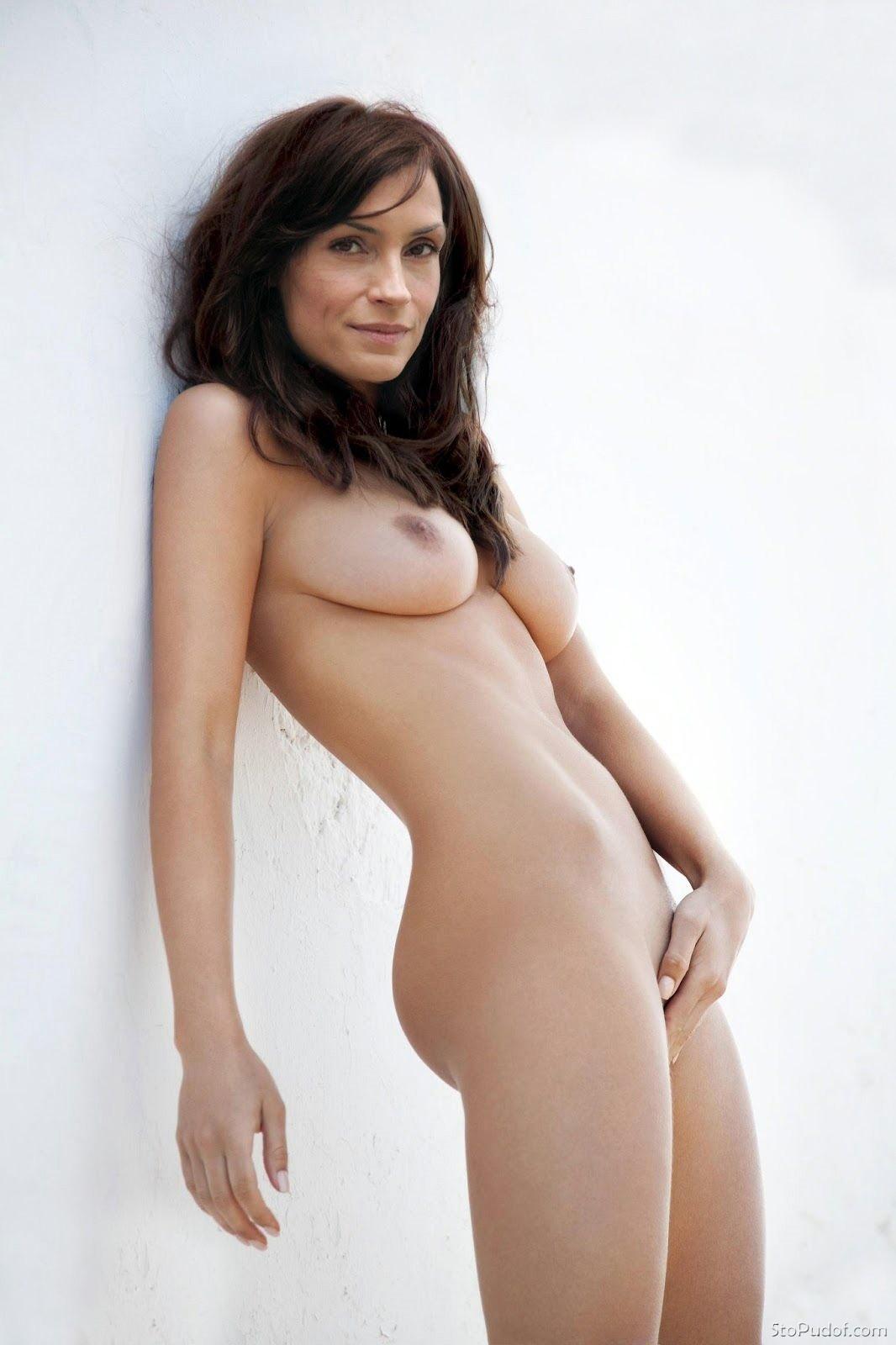 Amisha patel real nude