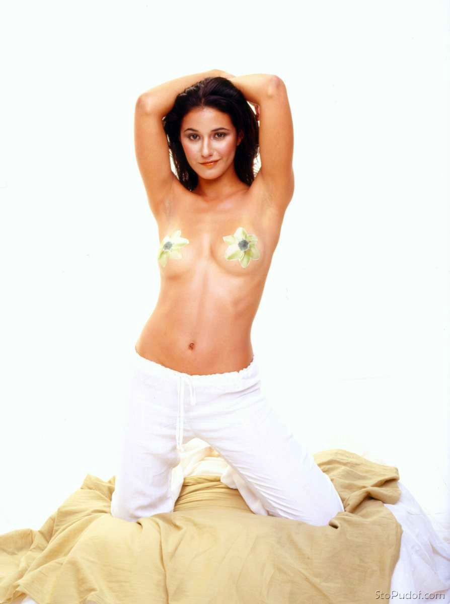 view photos of Emmanuelle Chriqui nude - UkPhotoSafari